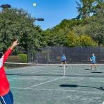 Tennis 5 Web