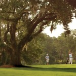 Golfers - for photo grid-2