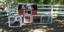 Oldfield Chicken Coops