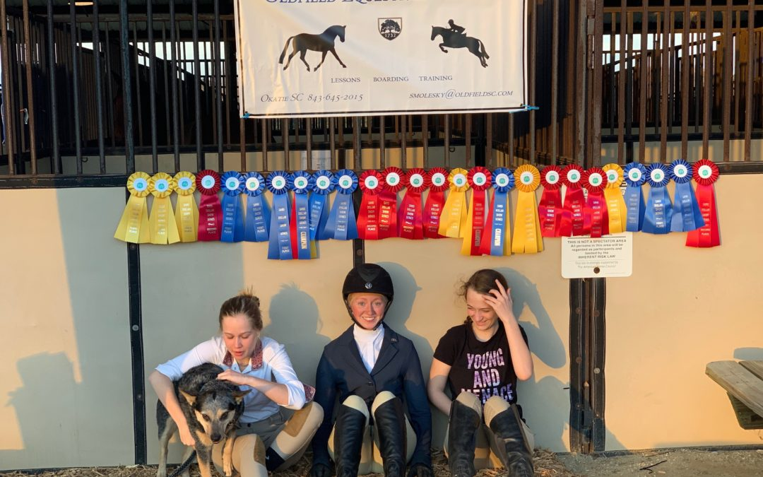Equestrian Update by Sarah Molesky, Equestrian Director